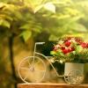 bike-flowerpot-1920x1200