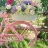 bike_flower_garden-236320